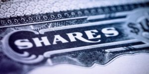 Types of shares by Cerize Roets